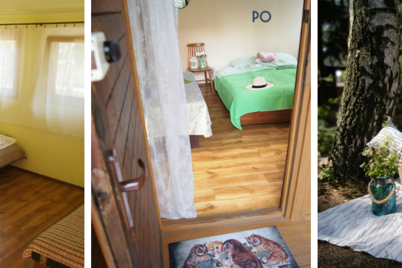 Realizacje: Domki w lesie – Home staging dla biznesu
