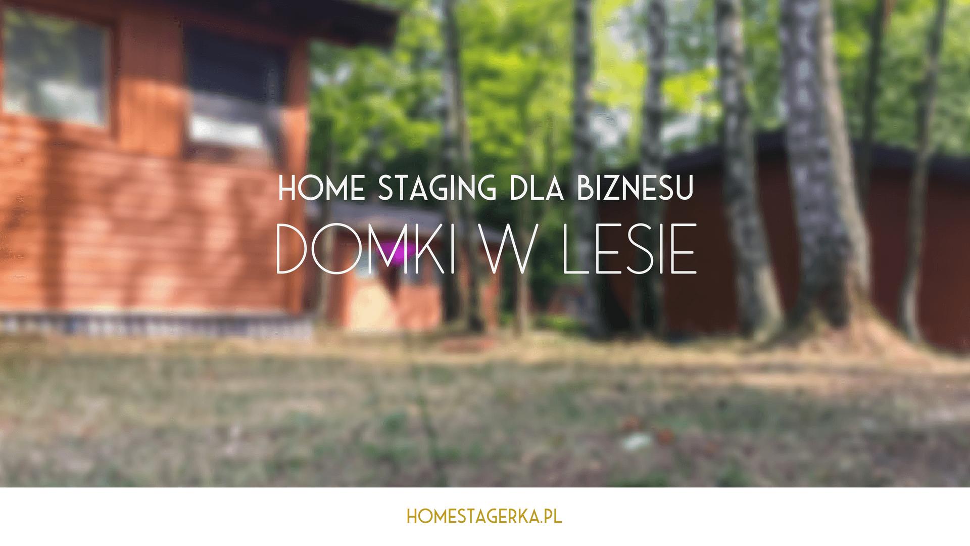 home staging dla biznesu - domki w lesie